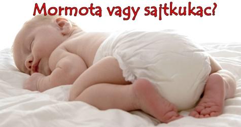 Mormota vagy sajtkukac? Avagy most tényleg ennyit alszik?
